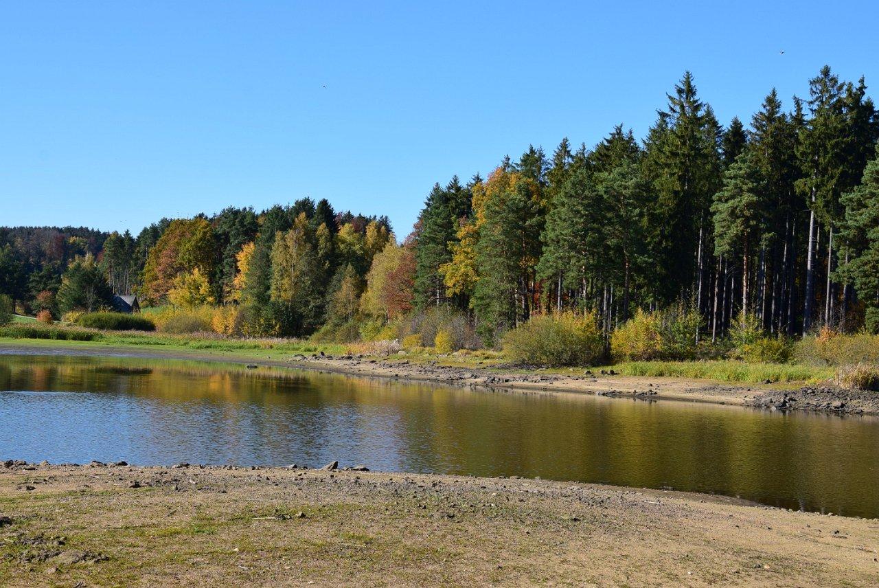 Rudi Jahn: Forstteich Herbst 2017