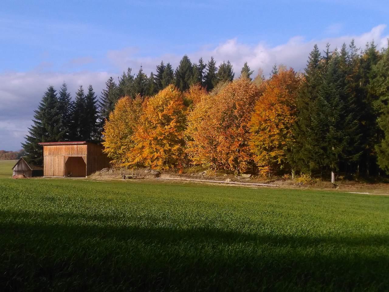 Rudi Jahn: Herbst Josefsdorf 2017