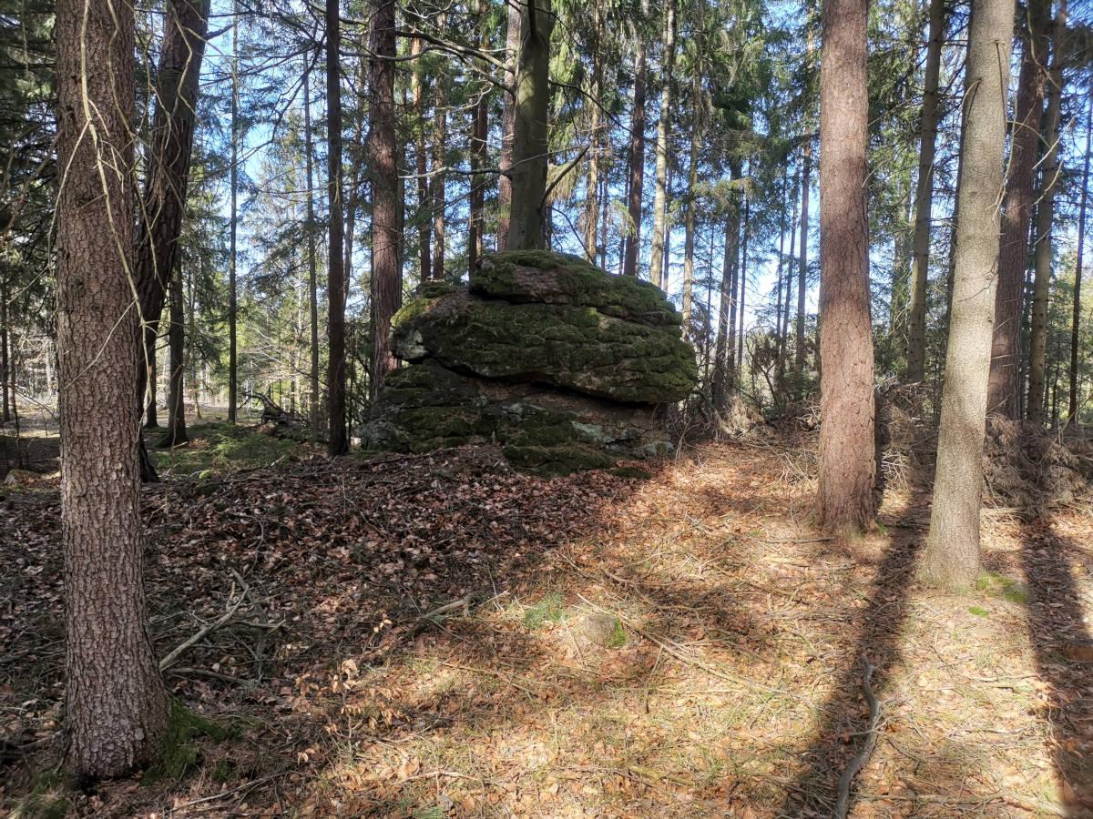Rudi Jahn: Steinformation oberer Waldlus
