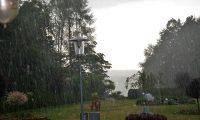 Gwitterregen-Maurer-Franz