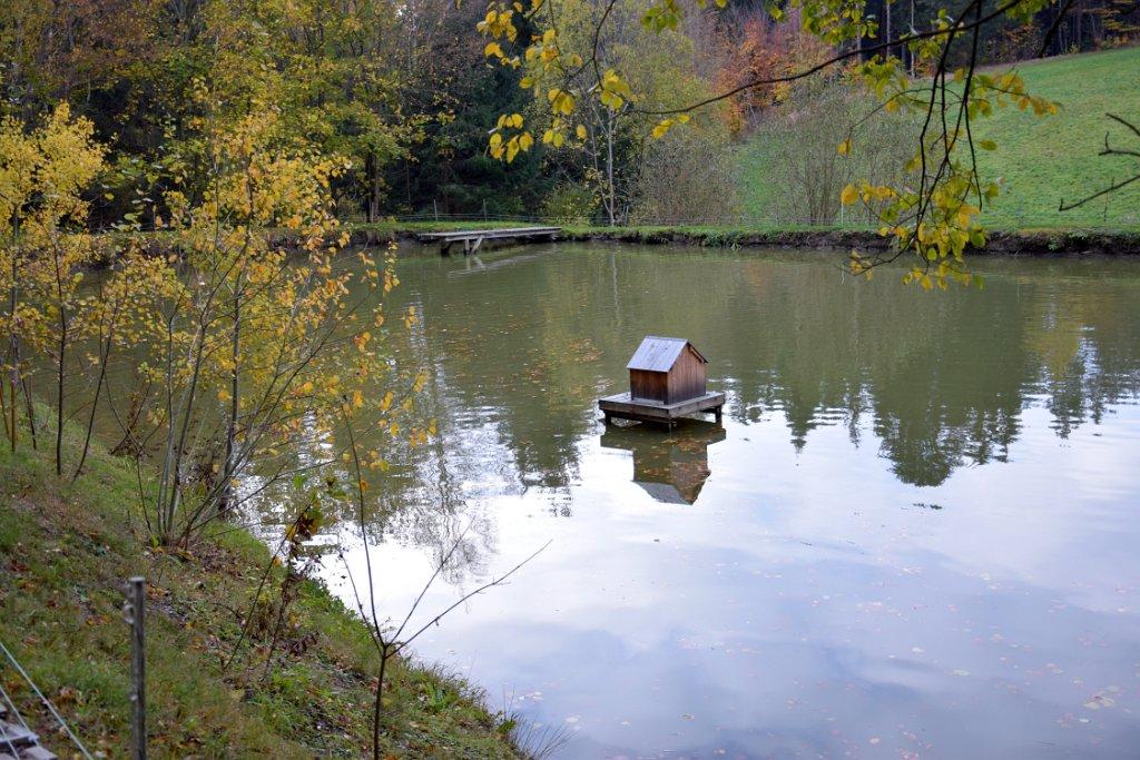 Rudi Jahn: Abfischen Teich Etzen 26.10.2018