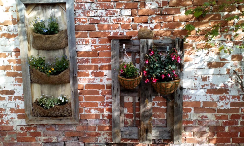 Christl Binder:  Sommerblumenwand