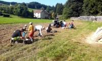 Edi Helmreich: Familieneinsatz bei der Kartoffelernte Sept. 2021