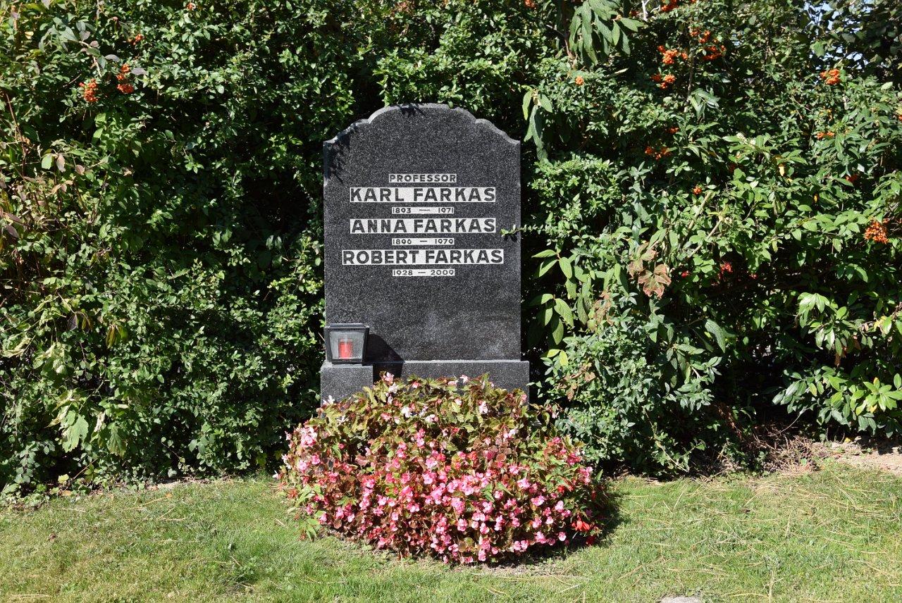 R. Jahn: Zentralfriedhof 30.09.2017 Grab Karl Farkas
