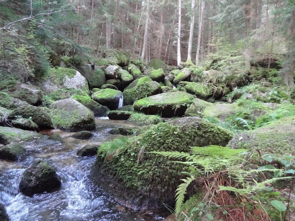 Wandertag 3._4.Schst._Lohnbachfälle_29.9.2016 (11)