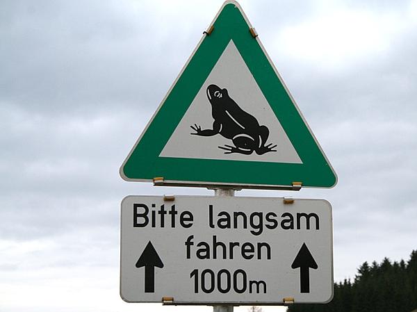 Kröten-Schild
