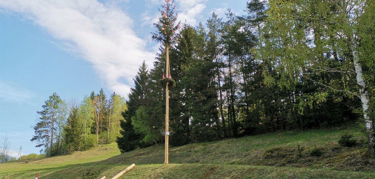 Ernst Grünstäudl: Maibaumsetzen 2019 Groß Meinharts