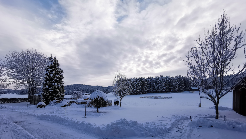 Rudi Jahn: Winterimpression 07.01.2021