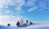 Gerlinde Schulmeister: Hochstand im Schnee 08.01.2020
